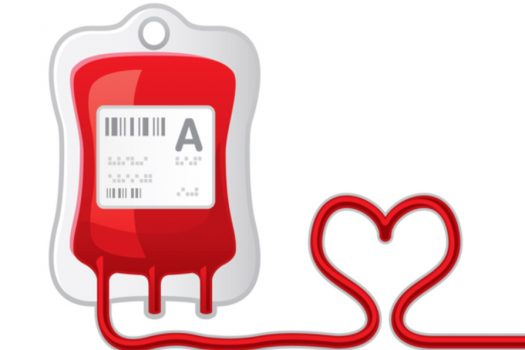 Kan Vermenin Önemi